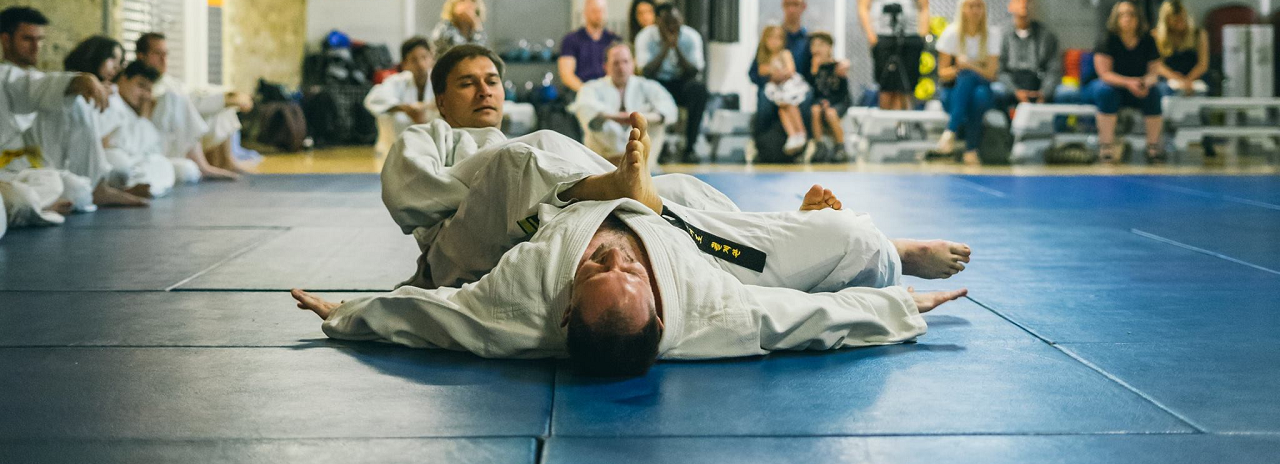 Hapkido ground technique
